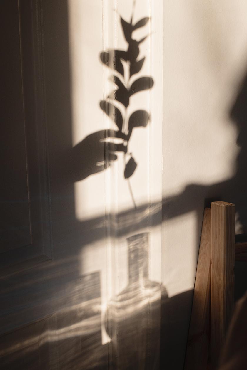 Department6_Sunlight